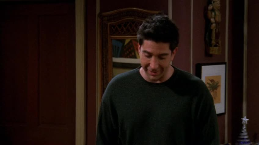 老友记/六人行/Friends 第八季 第十一集 S08E11 The One with Ross's Step Forward / 罗斯迈步向前行